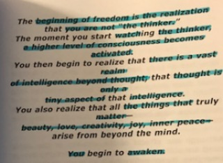 """Excerpt from """"The Power of One"""" By Edgar Tolle"""